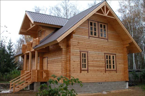 Чем уничтожить плесень на древесине дома или дачи? Какое средство от плесени хорошее?